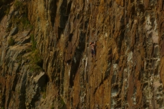 A climber tackles the emotional Blue Remembered Hills on Right Hand Red Wall, South Stack Area, Gogarth. This route is two long and demanding pitches, the first sustain, the second features a mind-bending move to reach a large falke followed by loose tottering.
