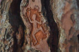 La Pedriza Carving
