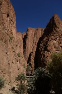 The amazing Todra Gorge.