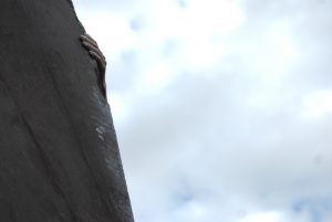 Cig-Arete, 7b, a classic and demanding route with technical cruxes!