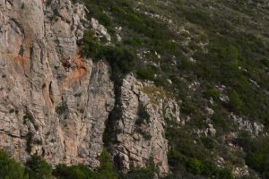 Les zapatelles del pastor a great but challenging 5c at Font D'Axia